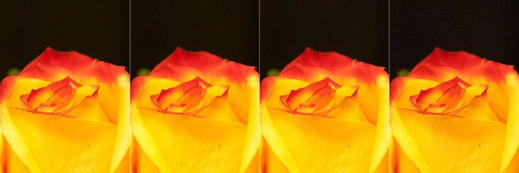 100%-Ausschnitt der Rohdaten von 4 Aufnahmen mit unterschiedlichen ISO-Werten - von links nach rechts: ISO-100, ISO-1600, ISO-2300, ISO-6400.