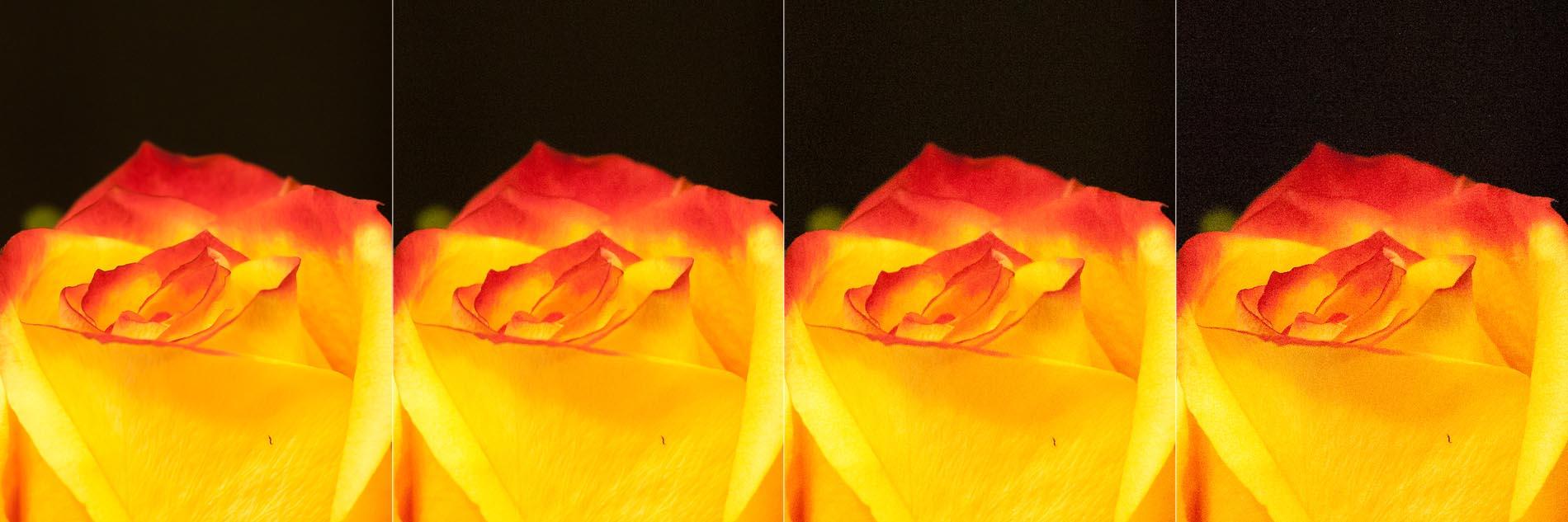 Der ISO Wert in der Fotografie und wie man ihn richtig einstellt