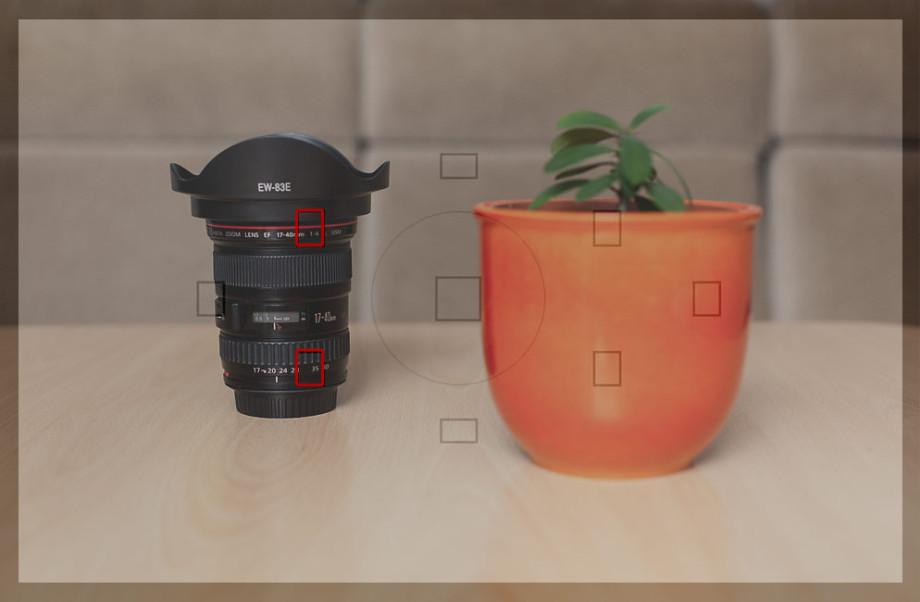 Autofokus - falsche AF-Messfelder von der Kamera gewählt