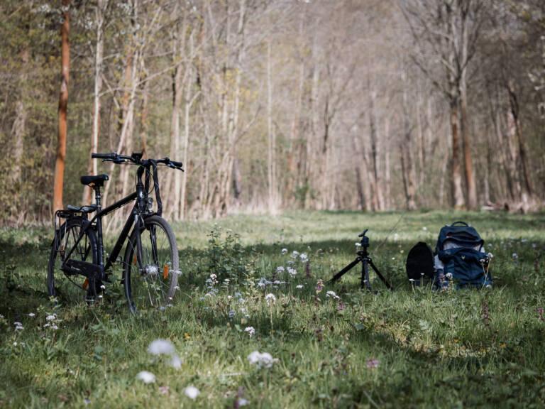 Wiese im Frühling - Makrofototour mit dem Fahrrad